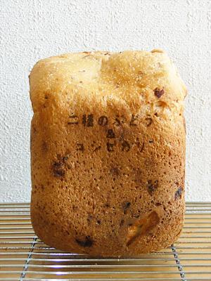 GOPANの2種類レーズンお米食パン