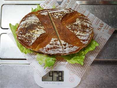 ドンキーバーグの重さは478g