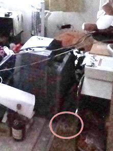 地震直後の寝室。テレビがひっくり返り、その下にあるのがゆめぴりか(赤丸)。
