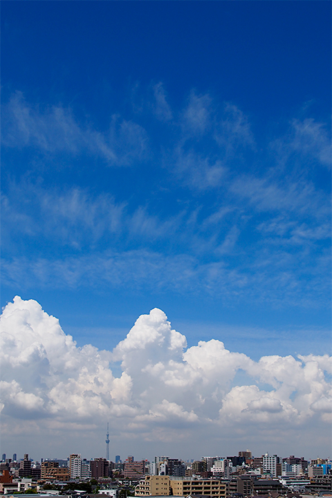 すじ雲に秋の気配
