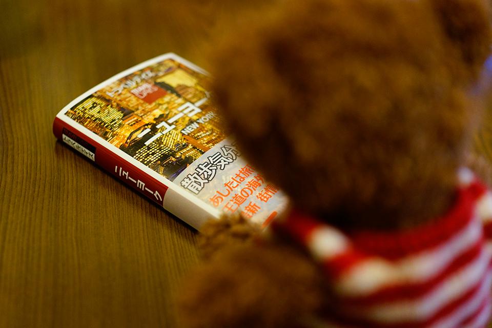 ジョニーとNew Yorkのガイドブック