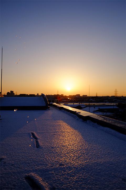 雪上の日の出
