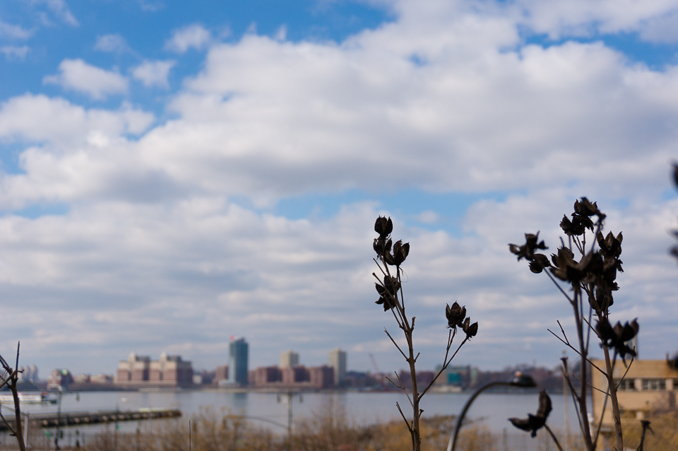 川の向こうはニュージャージー州。ビリーのふるさとだ(違うって)