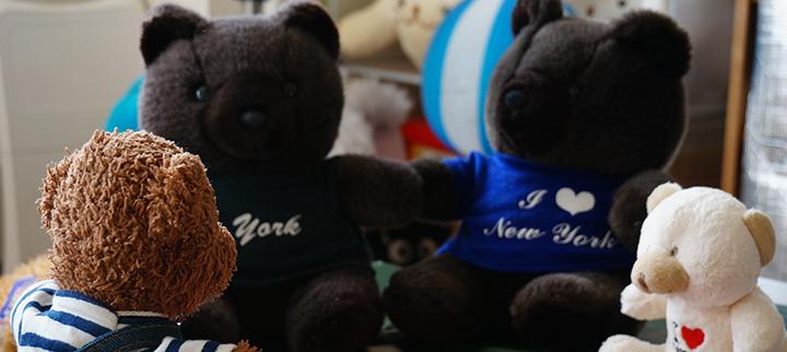 DSC03313ビリー、ニューヨーク帰りの先輩クマたちに旅の報告