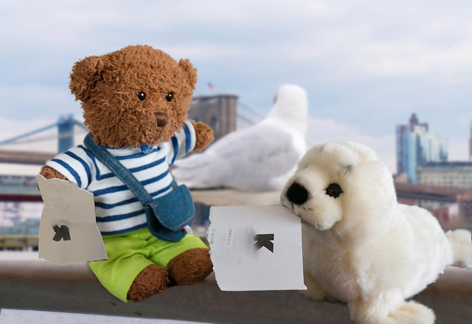 アザラシのデイジーが謎の紙切れを持ってやってきた。