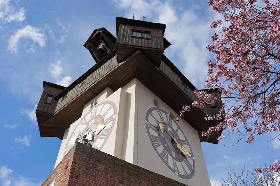 桜と時計台。お城と桜のような、日本人が好きそうな構図になりました。