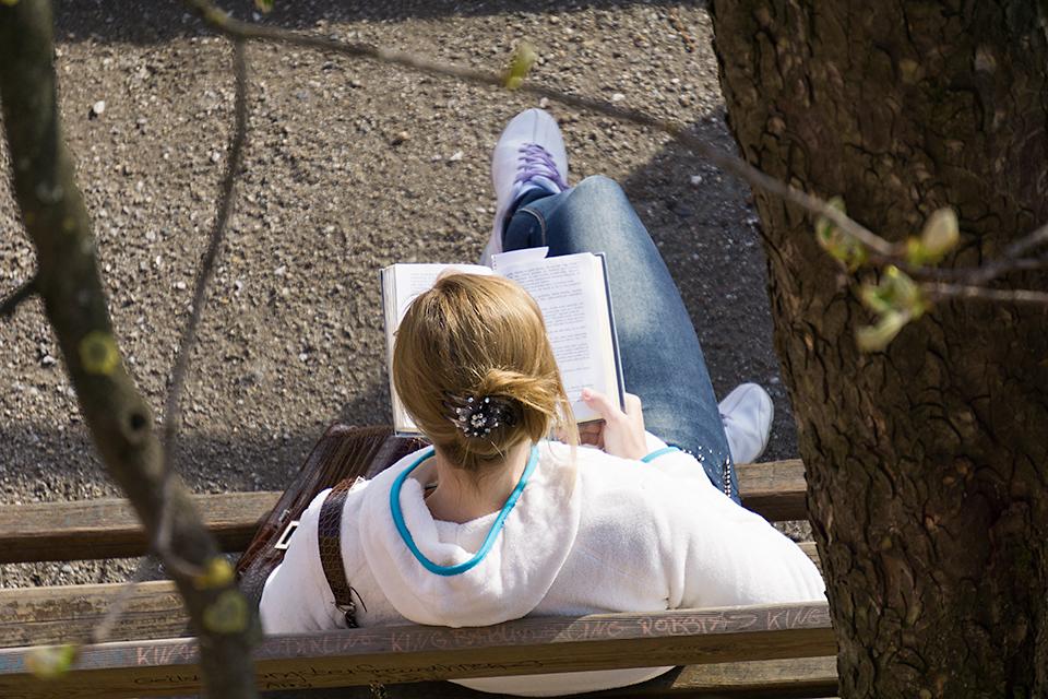 シュロスベルクの坂のベンチで読書する人。