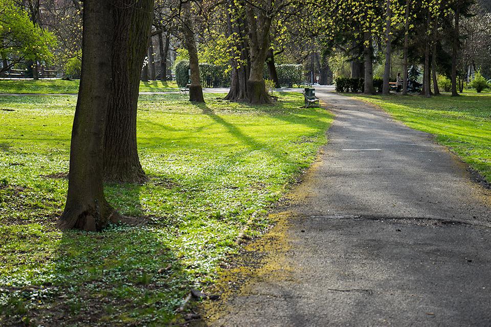 市立公園。