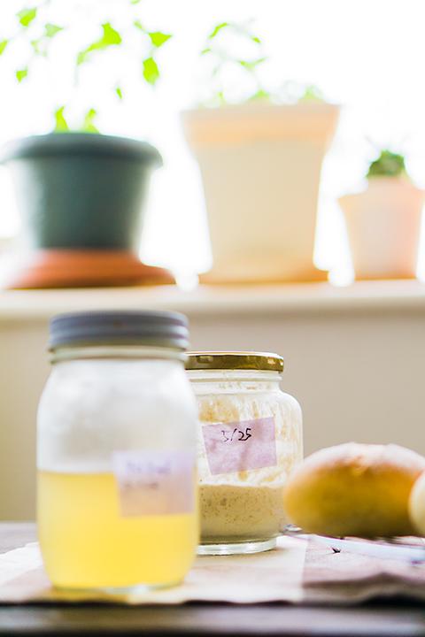 リンゴで作る自家製天然酵母生種