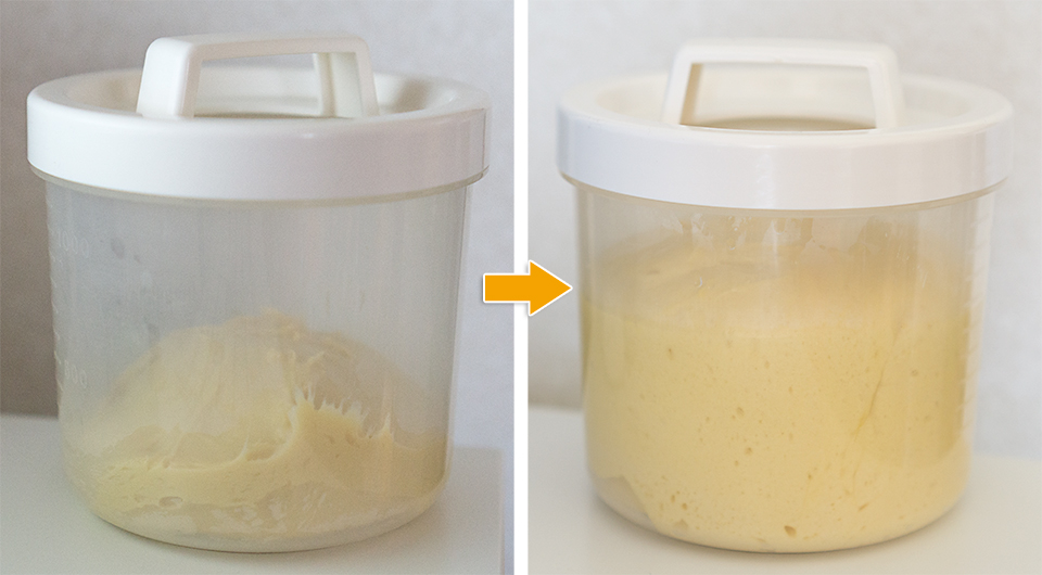発酵前(左)と発酵後。